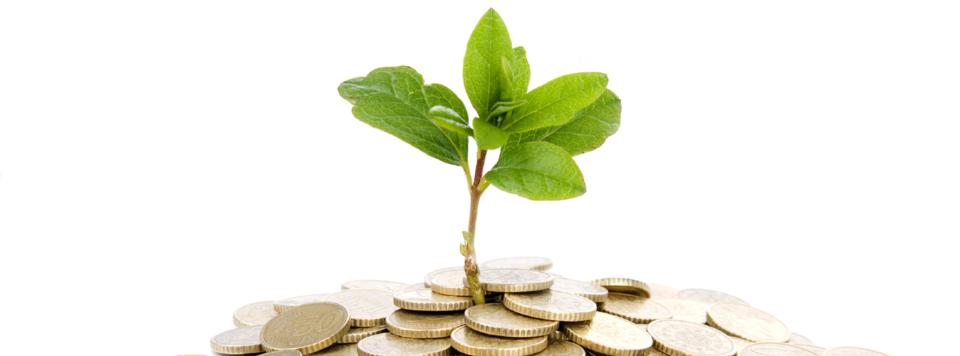 Startup- und Mittelstandsfinanzierung